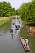 Punting - Cambridge, England