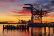 Port of Oakland at Sunset