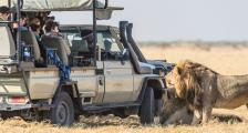 On Safari in Botswana Africa