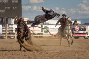 Bucking Bronco throws rider off before the necessary 8 second ride-time has elapsed.