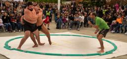 At this demonstration of Sumo, a traditional Japanese sport with a history of many centuries, the American Sumo wrestler attempts to force the Mongolian Sumo wrestler from the circular ring.