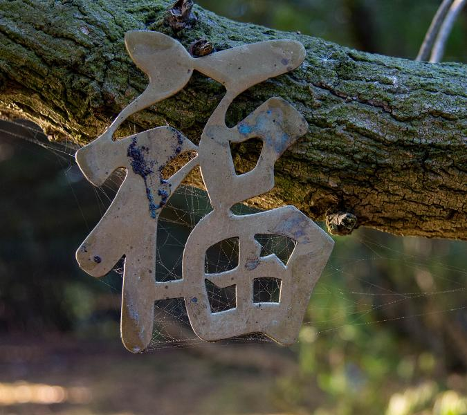 Brass decoration found on a trail at Lake Merced