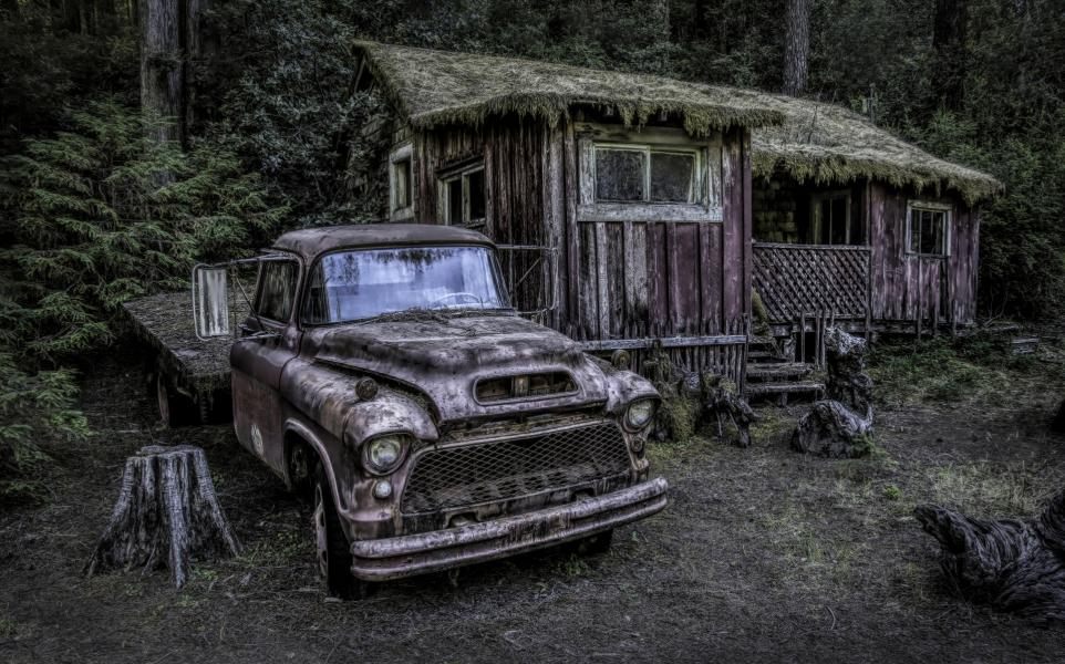 Fixer-upper in the woods, serious offers only.  Truck included.