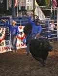 Bull Rider Hangs On, Ca St Fair