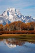 Mt. Moran - Grand Teton Nat. Park, WY