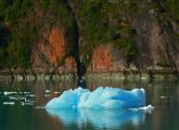 Iceberg float by our ship as we go into the Endicott Arms, Alaska