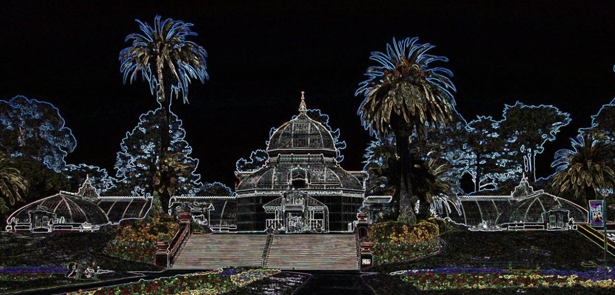 The Conservatory of Flowers - A Neon View